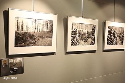 Omni-Foto stelt werken van de leden voor