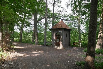 Domein 'De Dijken' in Diepenbeek wordt met bijna 40 hectare uitgebreid