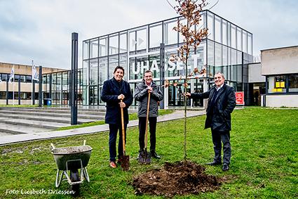 Zomereik van ere-gouverneur Herman Reynders krijgt een plek aan UHasselt campus Diepenbeek